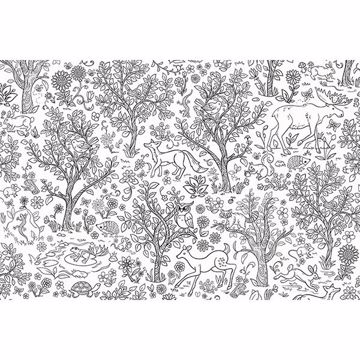 Picture of Wilderness Coloring  Wall Mural