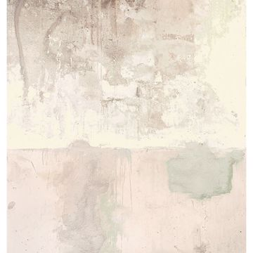 Picture of Pale Pink Weathered Wall Mural