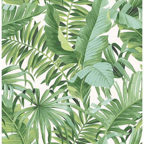 Picture of Alfresco Green Palm Leaf Wallpaper