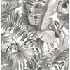 Picture of Alfresco Black Palm Leaf Wallpaper