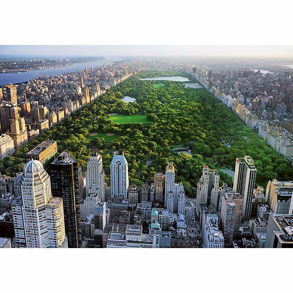 Picture of Central Park Wall Mural