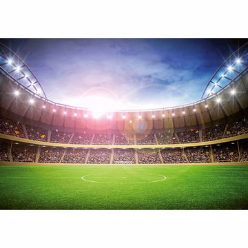 Picture of Stadium at Night Wall Mural