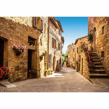 Picture of Tuscany Village Wall Mural
