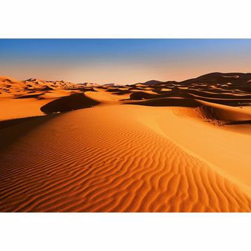 Picture of Desert Landscape Wall Mural
