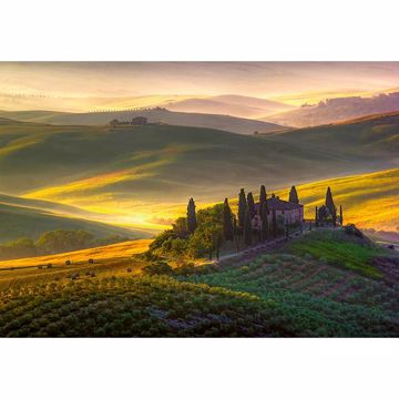 Picture of Toscana Wall Mural