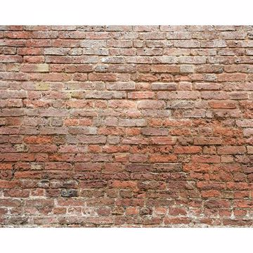 Picture of Classic Brick Wall Mural