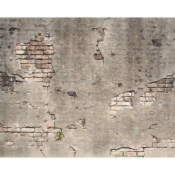 Picture of Broken Concrete Wall Mural