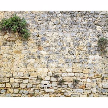Picture of Stone Wall Mural