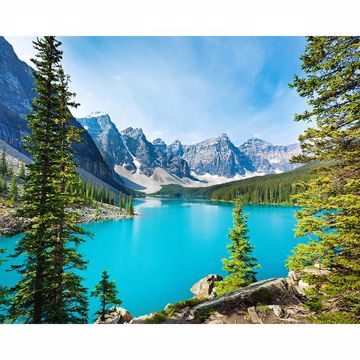 Picture of Lake Moraine Wall Mural