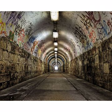 Picture of Graffiti Tunnel Wall Mural