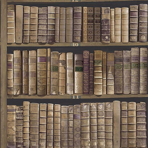 Picture of Trinity Library Brown Book Wallpaper