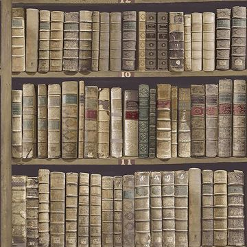 Picture of Trinity Library Green Book Wallpaper