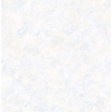 Picture of Astor Blue Texture