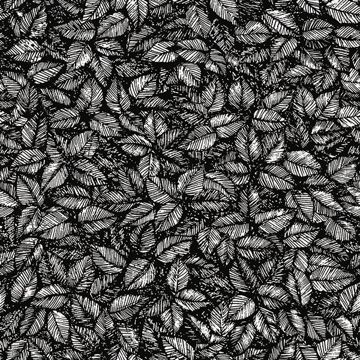 Picture of Amorina Black Leaf Wallpaper