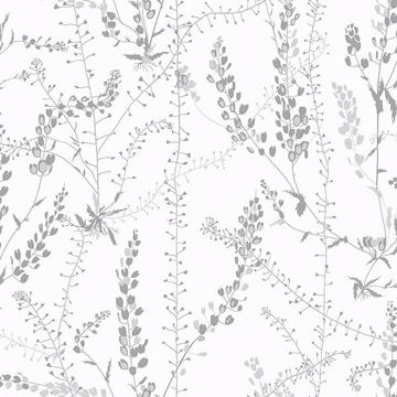 Picture of Bladranker Grey Botanical Wallpaper