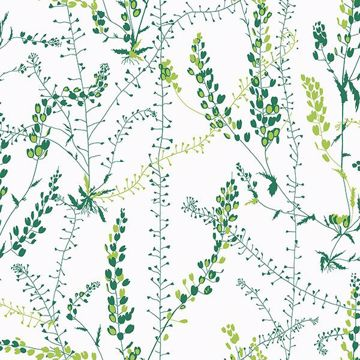 Picture of Bladranker Green Botanical Wallpaper