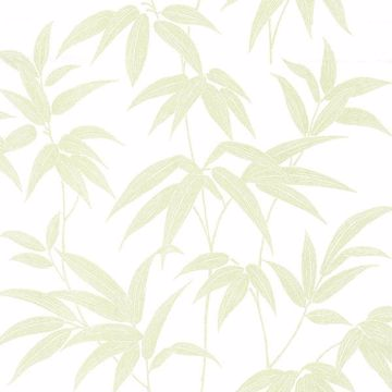 Picture of Sasa Green Bamboo Leaf Wallpaper