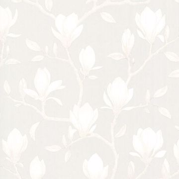 Picture of Grandiflora Beige Magnolia Wallpaper