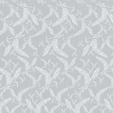 Picture of Lari Grey Bird Wallpaper