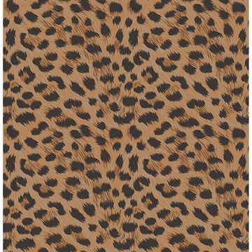 Picture of Furs Orange Leopard Wallpaper