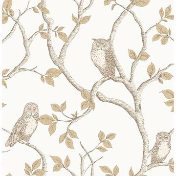 Picture of Linden Natural Owl Wallpaper