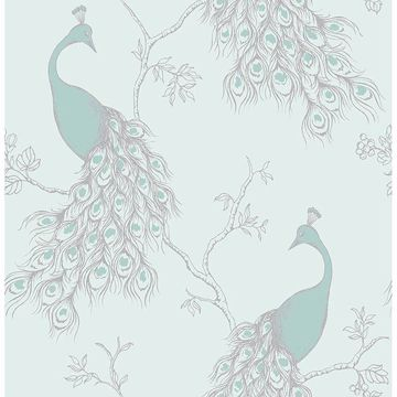 Picture of Phasia Seafoam Peacock Wallpaper