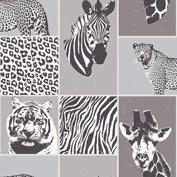 Picture of Zoya Grey Safari Wallpaper