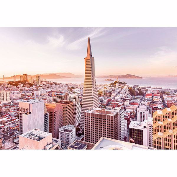 Picture of San Francisco Morning Wall Mural