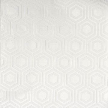 RD5671 Paintable Wallpaper