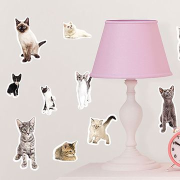 Picture of Cats Meow  Wall Stickers