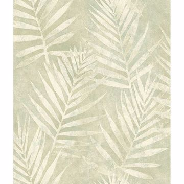 Picture of Amador Olive Palm Wallpaper