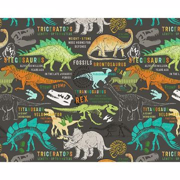 Picture of Dinosaurs Wall Mural