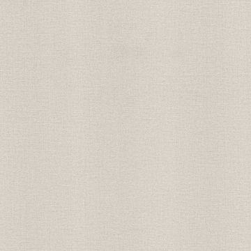Picture of Rocky Cream Canvas Wallpaper