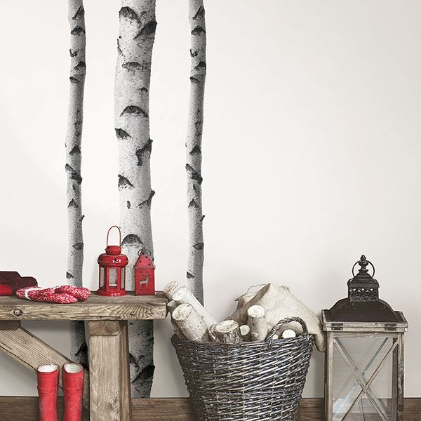 Picture of Silver Birches Wall Art Kit