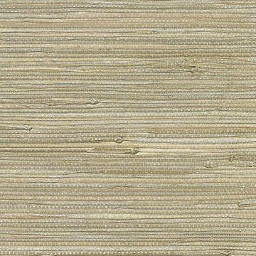 Picture of Iriga Platinum Grasscloth Wallpaper