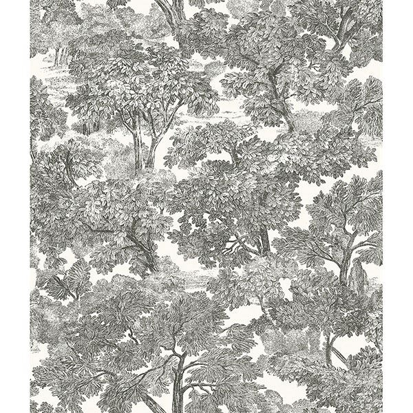 Picture of Spinney Black Toile Wallpaper