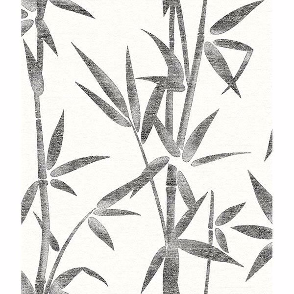 Picture of Catasetum Black Bamboo Wallpaper