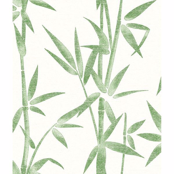 Picture of Catasetum Green Bamboo Wallpaper
