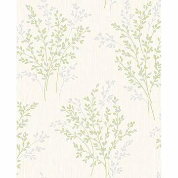 Picture of Haworthia Green Glitter Leaf Wallpaper