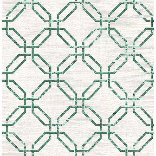 Picture of Phaius Green Trellis Wallpaper