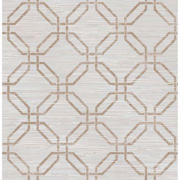 Picture of Phaius Taupe Trellis Wallpaper