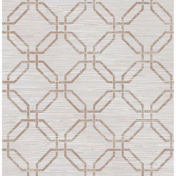 Picture of Phaius Taupe Trellis Wallpaper