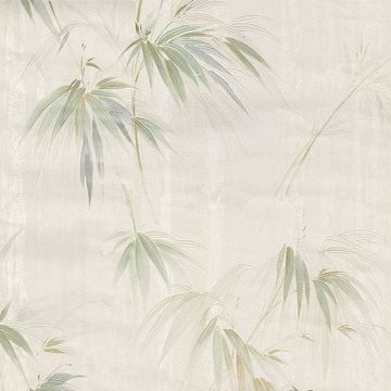Picture of Poales Cream Bamboo Wallpaper