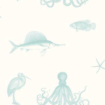 Picture of Ventura Aqua Sea Creature Wallpaper