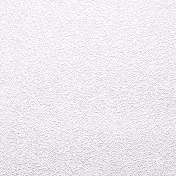 Picture of Jody Paintable Stucco Texture Wallpaper