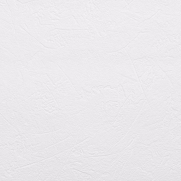 Picture of Brier Paintable Plaster Texture Wallpaper