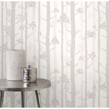 Picture of Sydow Beige Birch Tree Wallpaper