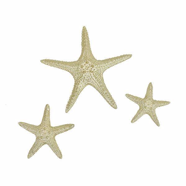 Picture of Yelton Platinum Starfish Set