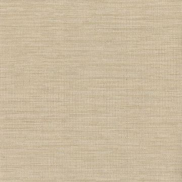 Picture of Cape Town Beige Faux Silk Wallpaper