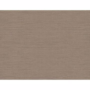 Picture of Agena Chocolate Sisal Wallpaper